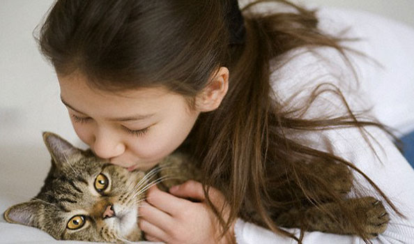 How to take care of a cat – essential things you must know