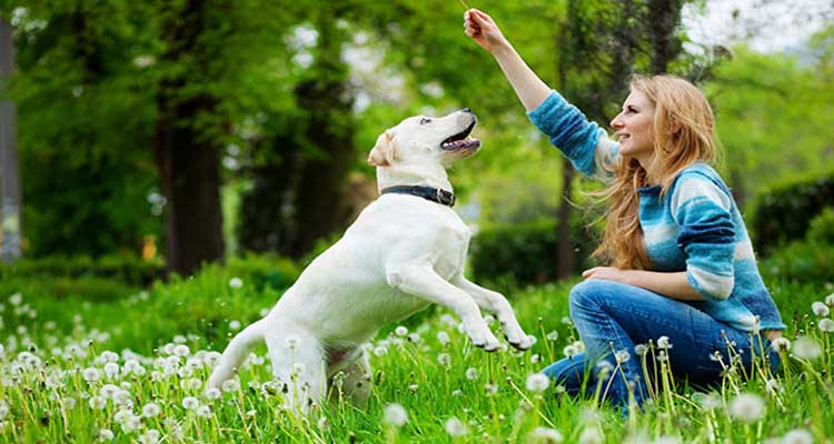 amazing-health-benefits-of-pets-you-should-know
