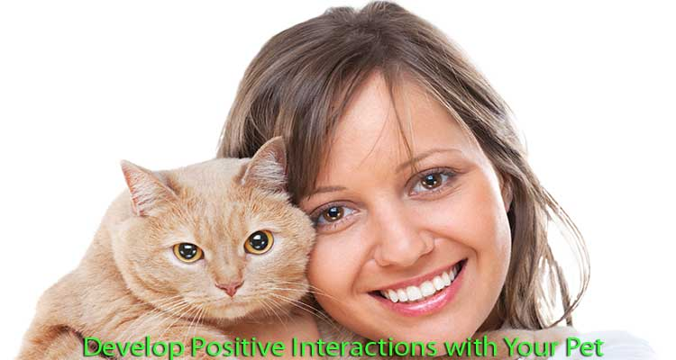 develop-positive-interactions-with-your-pet