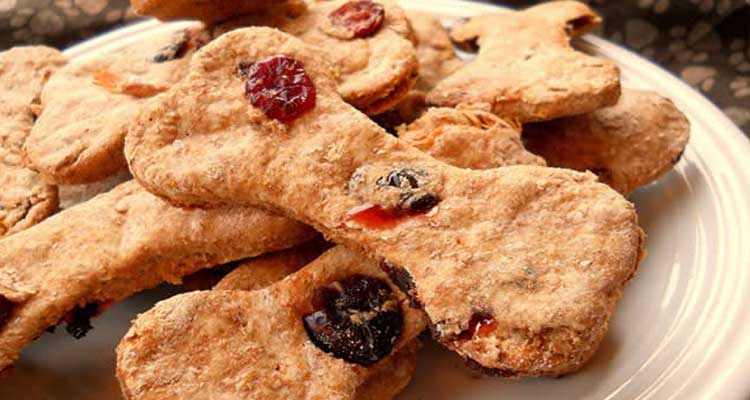 easy-homemade-dog-treats-recipes