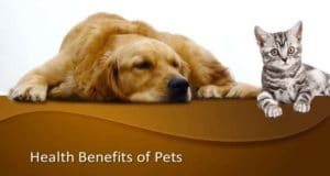Health Benefits of Pets for a Happy and Healthy Life