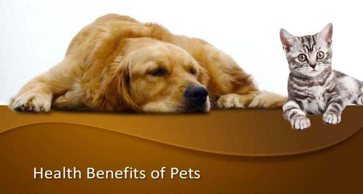 health-benefits-of-pets-1