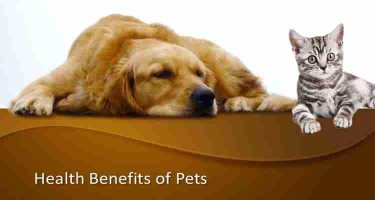 health-benefits-of-pets-1