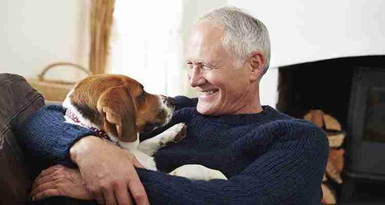 health-benefits-of-pets2