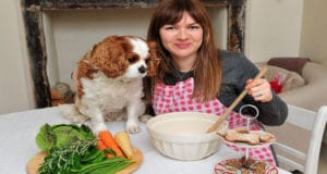Homemade Dog Food Recipes: Give Your Pet the Ideal Diet