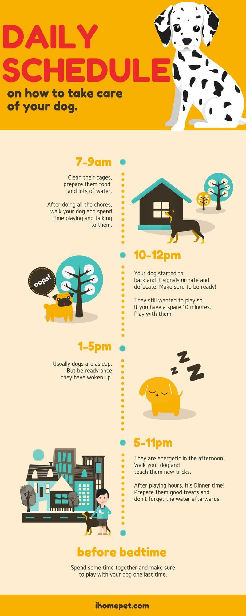 Daily Schedule on How to Take Care Of Your Dog
