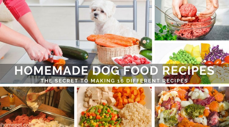 Homemade Dog Food Recipes Making 16 Different Recipes