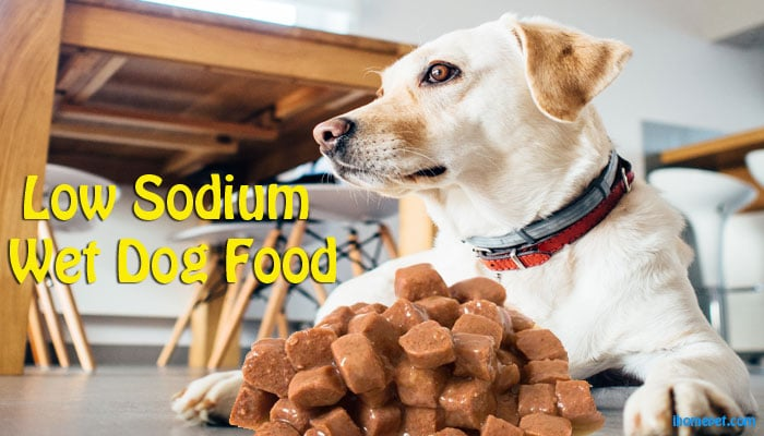 Low Sodium Wet Dog Food