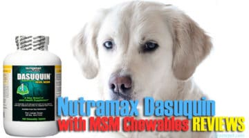 Nutramax Dasuquin with MSM Chewables REVIEWS