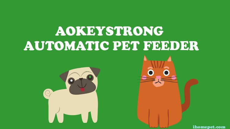 Aokeystrong Automatic Pet Food Water Feeder