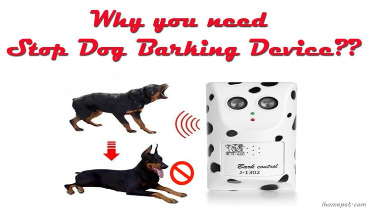 Why you need to buy a Stop Dog Barking Device - iHome Pets