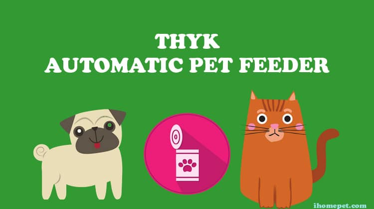 Thyk Automatic Pet Feeder Ihome Pets