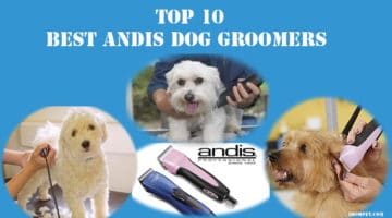 TOP 10 Best Andis Dog Groomers 2018
