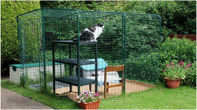 Tips to find a Quality Boarding Kennel for Your Cat