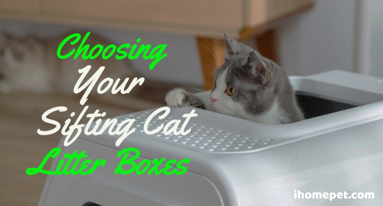 Choosing your sifting cat litter boxes