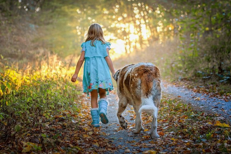 Childs best friend walking with a dog