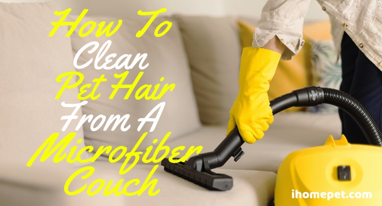 How to Remove Pet Hair from a Microfiber Couch