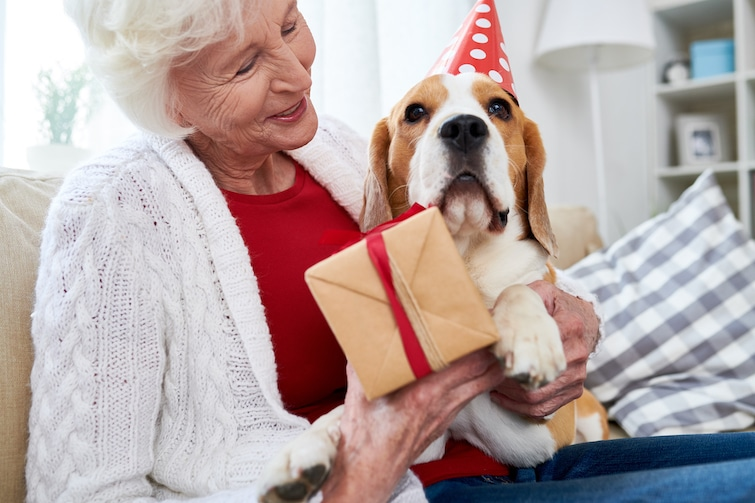 Dogs improve an older persons everyday life