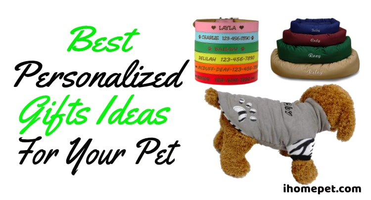 Best Personalized Gift Ideas For Your Pet
